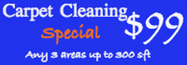 CarpetCleaningSpecial
